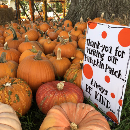pumpkins andpatch sign